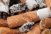 stock photo of ashes  - Cigarette butts and ashes extreme close up - JPG