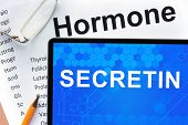 image of hormone  - Papers with hormones list and tablet  with word secretin - JPG