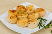 image of scallops  - Grilled scallops in the bowl with herbs - JPG