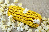 picture of maize  - Corn maize and popcorns combined on a table - JPG