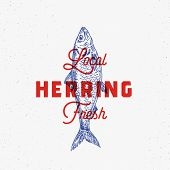 Local Fresh Herring. Abstract Vector Sign, Symbol Or Logo Template. Hand Drawn Herring Fish With Cla poster