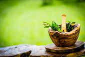 Fresh herbs from the garden in wooden olive mortar against with sunny garden background. Image poster