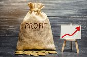 Money Bag With The Word Profit And An Up Arrow. Concept Of Business Success, Financial Growth And We poster