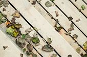 Fallen Dry Withered Leaves Lie On Bright Wooden Steps, Top View. Wooden Stairs With Colorful Fallen  poster