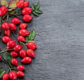 Red ripe rose-hips on gray graphite background. Top view. poster