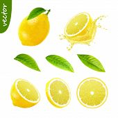 3d Realistic Vector Set Of Elements (whole Lemon With Leaf , Sliced Lemon, Splash Lemon Juice, Leave poster