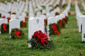 image of arlington cemetery  - Headstones in Christmas time in Arlington National Cemetery  - JPG
