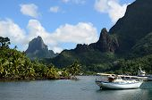 picture of pacific islands  - Boat in Cooks Bay with Moua Puta mountain in the background on the tropical pacific island of Moorea near Tahiti in French Polynesia - JPG