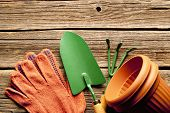 Gardening Equipment On Rustic Wooden Boards