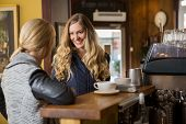 stock photo of bartender  - Happy female friends conversing by counter in coffeeshop - JPG