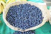 stock photo of berries  - Harvest of fresh acai berries at farmers organic market in Turkey - JPG