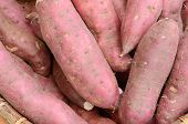 picture of potassium  - Close Up Of Sweet Potato In The Market - JPG