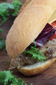 foto of cheese-steak  - Sandwich with pork steak tomato cheese and lettuce. ** Note: Shallow depth of field - JPG