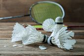 stock photo of shuttlecock  - Shuttlecocks and Racket with parts of its feathers scattered on wooden