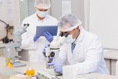 stock photo of microscopes  - Scientists using tablet pc and microscope in the laboratory - JPG