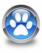 stock photo of animal footprint  - Animal footprint icon glossy blue round button - JPG