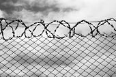 stock photo of barbed wire fence  - Iron fence with a barbed wire - JPG