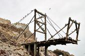 stock photo of ica  - Birds on platform Ballestas Islands - JPG