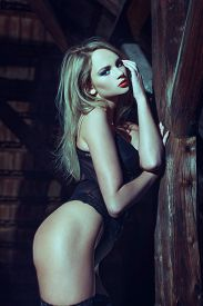 picture of timber  - Sexy blode woman in barn posing at timber sensuality - JPG