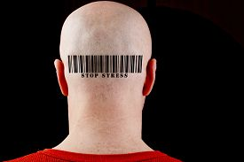 picture of male pattern baldness  - Barcode Stop stress - JPG
