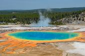 Grand Prismatic Springs Yellowstone National Park Wyoming poster