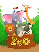 Zoo Animals. African Safari Wildlife Cute Groups Wild Animal Zoo Banner Jungle Nature Funny Green La poster