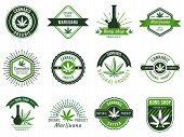 Marijuana Label. Smoke Weeds, Cannabis Joint And Hashish Or Weed Smoking Device. Marijuana Seeds Vec poster