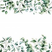 Watercolor Different Eucalyptus Seamless Border. Hand Painted Eucalyptus Branch And Leaves Isolated  poster