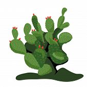 picture of prickly-pear  - Prickly Pear Cactus is hand drawn original artwork - JPG