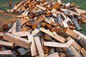 Preparation Of Firewood For The Winter. Firewood Background, Stacks Of Firewood In The Forest. poster