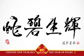 picture of chinese new year 2013  - Vector Snake Calligraphy - JPG