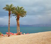 stock photo of thunderhead  - Winter on the Dead Sea - JPG