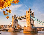 pic of british culture  - Tower bridge with autumn leaves - JPG