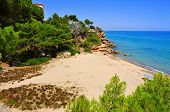 view of Cala dels Vienesos beach in Miami Playa, Mont-roig del Camp, Spain