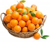 stock photo of clementine-orange  - Oranges with leaves in a big basket isolated on white - JPG