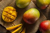 picture of mango  - Organic Colorful Ripe Mangos on a Background - JPG