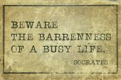 pic of socrates  - beware the bareness of busy life  - JPG