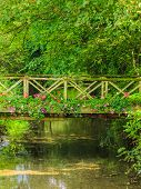 stock photo of english cottage garden  - Old small bridge over river stream creek in green garden - JPG
