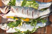 stock photo of bass fish  - prepared sea bass fish for cooking - JPG
