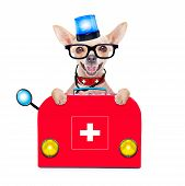 stock photo of veterinary surgery  - chihuahua dog as a medical veterinary emergency doctor with stethoscope and first aid kit behind a white and blank banner and blue lights isolated on white background - JPG