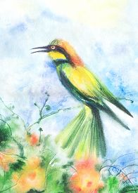 stock photo of wet  - Water color illustration of a tropical bird - JPG