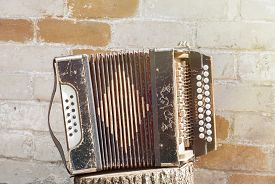 pic of accordion  - accordion on the stump near the wall background - JPG
