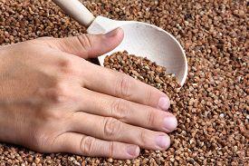 stock photo of buckwheat  - hand with buckwheat in spoon on buckwheat background - JPG