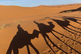 stock photo of sahara desert  - Africa - JPG