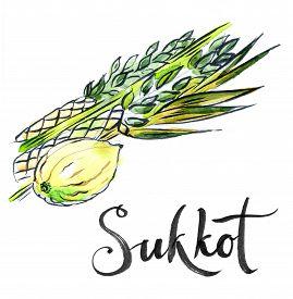 stock photo of sukkoth  - Watercolor lulav and etrog Sukkot plants Jewish holiday hand drawn  - JPG