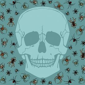 foto of black widow spider  - Halloween card with skull silhouette and spiders - JPG