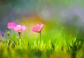 pic of cosmos flowers  - Oil painting nature grass flowers - JPG