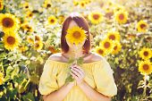Summer Concept. Female Person   With Sunflower Enjoying Nature And Laughing On Summer Sun Flower Fie poster