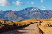 Pampas landscapes in  Cordillera de Los Andes, Peru, South America poster