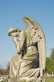 stock photo of cherubim  - beautiful statue in english cemetery - JPG